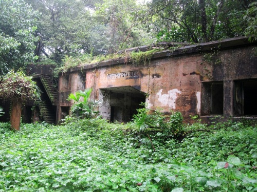 Battery Stanley, reclaimed by the jungle.