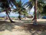 Isla Elefante, where they even decorate the Palm Treetrunks!