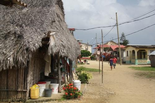Downtown Nargana