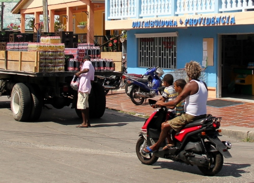 Rasta Daddy hauling kids