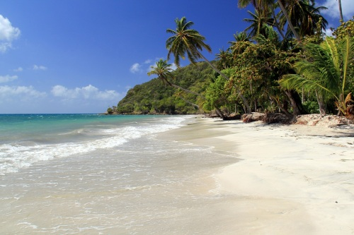 One of the many pristine beaches on the island