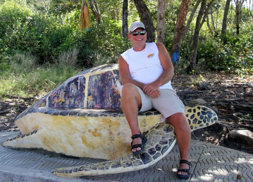 Turtle Mon!