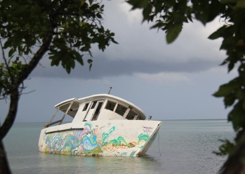 Even a wreck  can be transformed in a colorful work of art