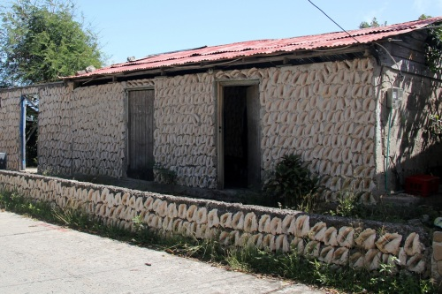 The Conch Shells House!