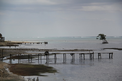 Fishing docks in Punta Gorda