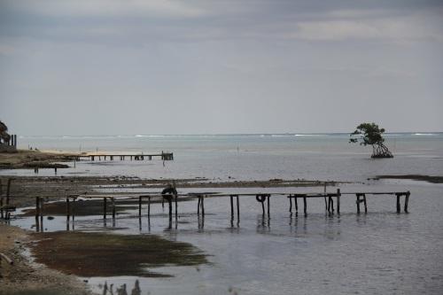 Fishing docks in Punta Gorda